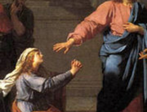 MOLESTIAS E INOPORTUNIDAD  (Mt 15, 21-28)