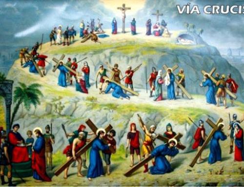 """¿""""VITA CRUCIS""""? (Mt 16, 21-27)"""