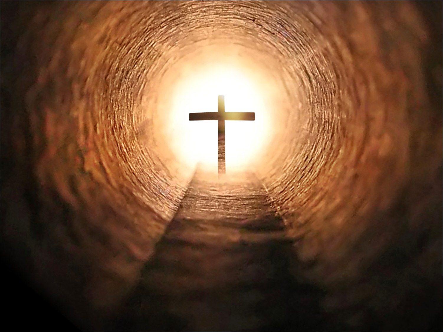 QUERER VER A JESÚS (Jn 12, 20-33)